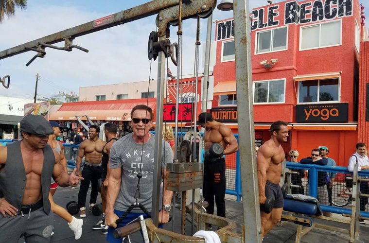 Arnold Schwarzenegger Spotted Training With The Locals At Muscle Beach Gym In Venice California